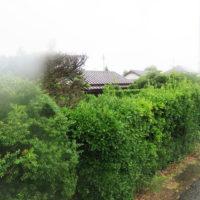 浜松市南区若林町売土地(外観)